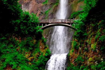 Columbia River Gorge Waterfalls Tour from Portland