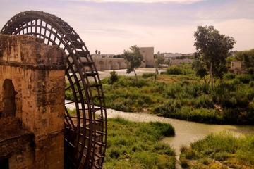 Seville, Cordoba and Granada Guided Custom Tour