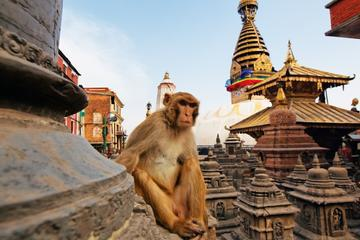 Private Kathmandu Sightseeing Tour