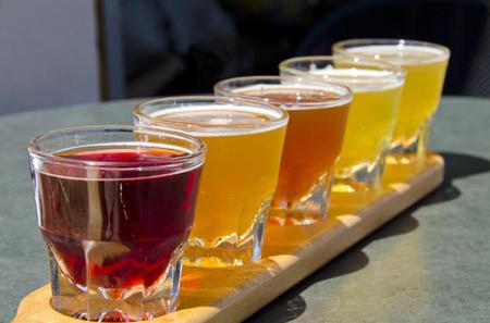 Small-Group Craft Brews and Bike Tour in San Francisco