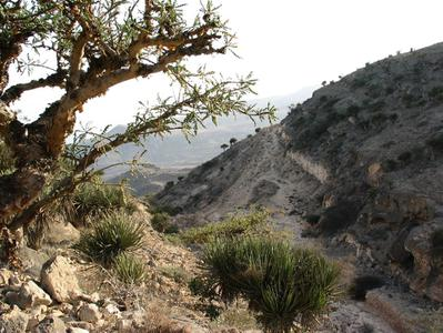 Wonders of Nature at Western Dhofar Private Tour