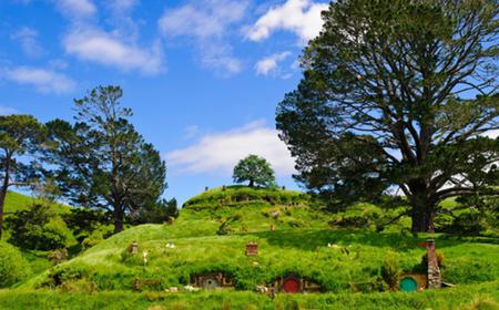 Waitomo Cave and Hobbiton Movie Set 1-Day Guided Tour