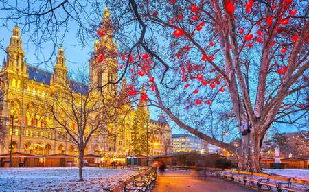 Christmas in Vienna: Small Group Afternoon Walking Tour