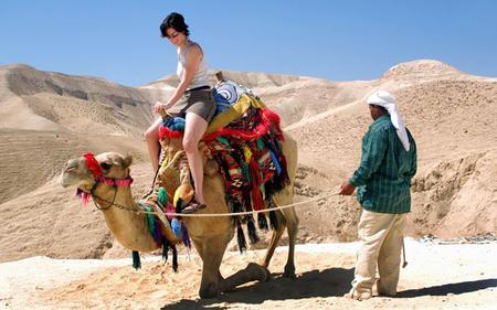 Dubai Saver Combo: City Tour, Dhow Dinner Cruise, Desert Safari