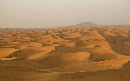 Private Full Day Liwa 4WD Safari -An Ocean of Dunes