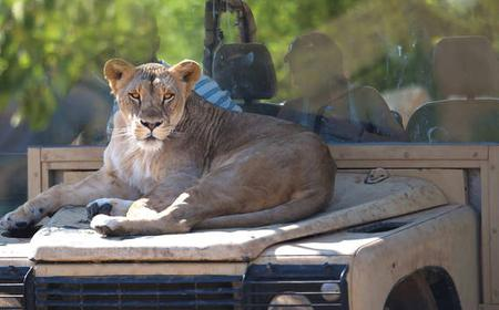 Athens: Full-Day Attica Athens Zoological Park Ticket