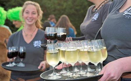 Wild Tastes Wine, Beer & Oyster Tasting from Auckland