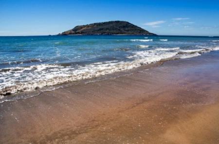 Mazatlan Shore Excursion: Stone Island Adventure Tour