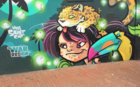 Bogotá: Private Graffiti Tour