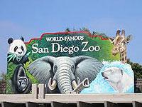 San Diego Zoo with Transportation