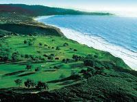 San Diegos Beach Tour La Jolla and Torrey Pines