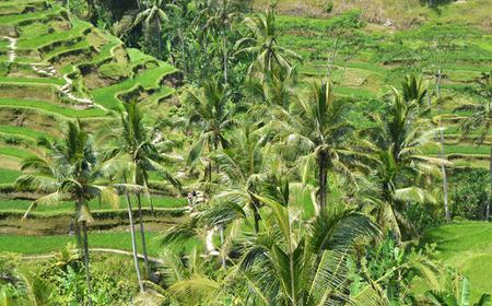 Bali: Private East Bali Tour with Local Guide