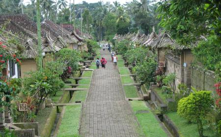 Bali: Full-Day Tour of Bali's Highlights