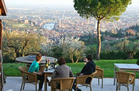Wine Tasting Session in Verona Hills