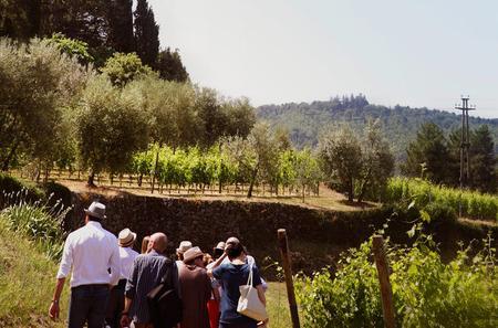 Valpolicella Wines and Amarone Wine Tasting in Verona