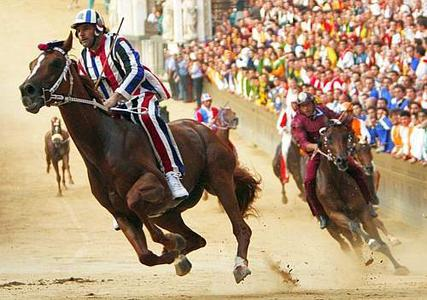 Siena: Palio Horse Race Day Trip from Florence