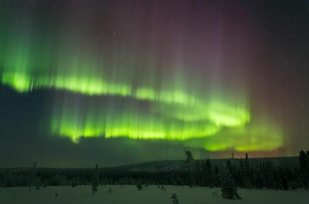 Northern Lights Picnic by Car from Rovaniemi