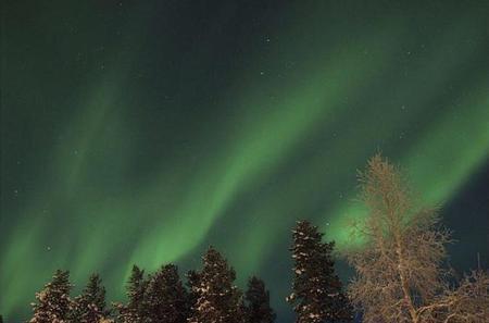 Northern Lights Snowmobile Safari from Rovaniemi