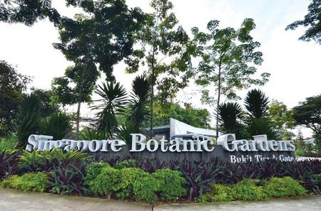 Half-Day Singapore Botanic Gardens Tour