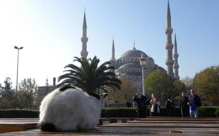 Istanbul Classics Walking Tour