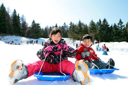 Ski Resort Sledding and Strawberry Picking Day Trip including Crab Lunch Buffet