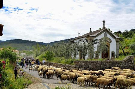 Full-day Private Tour to Beira Baixa Villages with Lunch