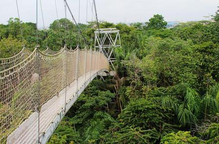 Lekki Conservation Centre Private Tour from Lagos
