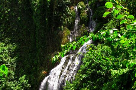 Guabara Adventure Day Trip: Waterfall Hiking and Rappelling