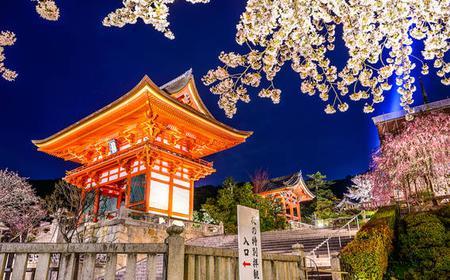 Kiyomizu Photo Walking Tour & Professional Photographer