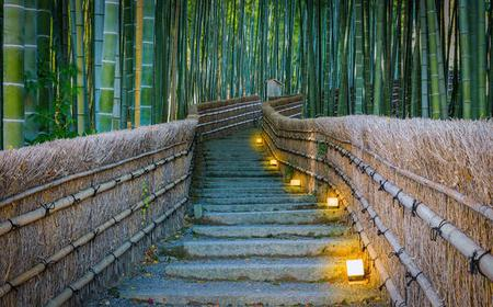 Arashiyama and Kyoto Temples & Luxury Tour Van