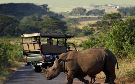 From Durban: Full-Day Hluhluwe-Umfolozi Park Tour