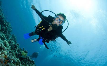 Let's Go Diving: Scuba Diving in Bodrum