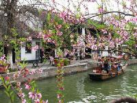 Zhujiajiao Water Village and Qibao Seven Treasures Old Town Private Day Trip from Shanghai