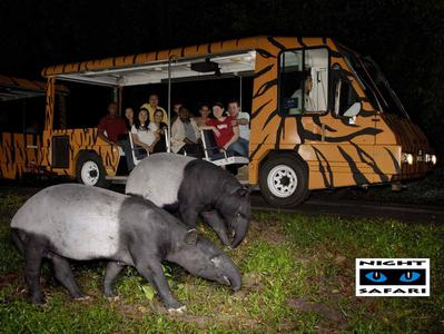 Night Safari Singapore Private Tour with Hotel Pick-Up