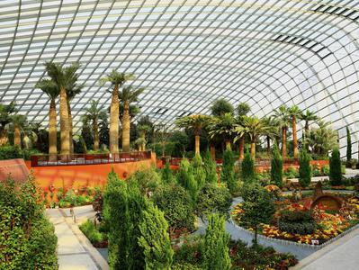 Singapore Gardens by the Bay Private Tour with Tickets and Transfers