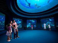 Sentosa Singapore S.E.A. Aquarium&trade One Day Pass