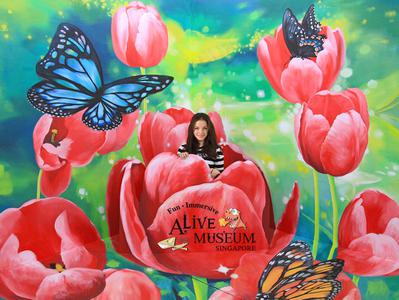 Singapore City Tour with Alive Museum Ticket