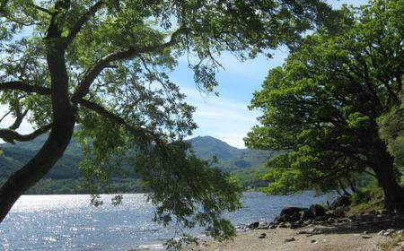 Loch Lomond and Whisky Distillery Half-Day Tour