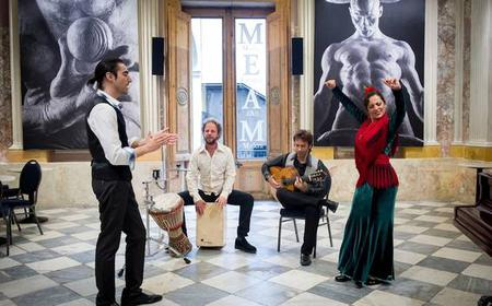 Barcelona: Flamenco Show at the Museum of Modern Art