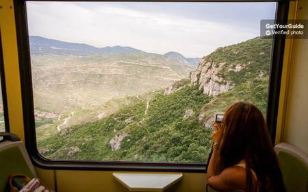 Trans Montserrat: Return Ticket and Museum Entrance