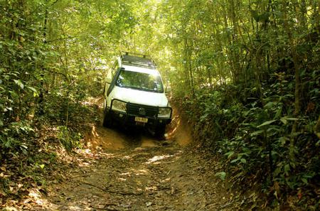 Barron Gorge and Kuranda National Park Half Day Rainforest and Waterfall 4WD Tour from Cairns