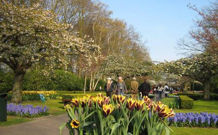 Skip the Line: Keukenhof Gardens Tour from Amsterdam