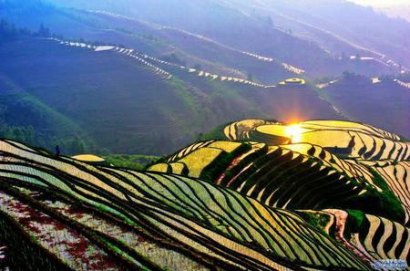 Bus Tour: Longji Rice Terraces and Local Minority Village Tour