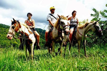 Jaco Horseback Zipline and Rappel Combo Tour
