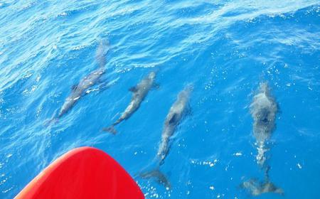 Ocean Diva Full-Day Sailing Cruise from El Gouna