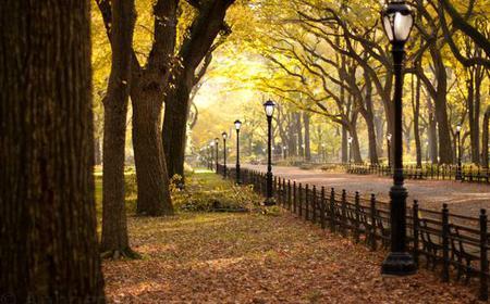 2.5-Hour Sunset Walking Tour of Central Park