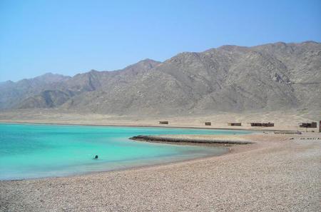 Ras Abu Gallum Snorkel and Camel Day Safari from Dahab