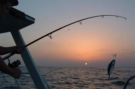 Fishing Trip in Dahab