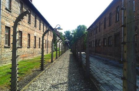 Auschwitz-Birkenau Self-Guided Visit from Krakow with Private Transfers
