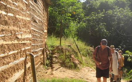 Rio de Janeiro Favela and Rainforest Hiking Half-Day Tour